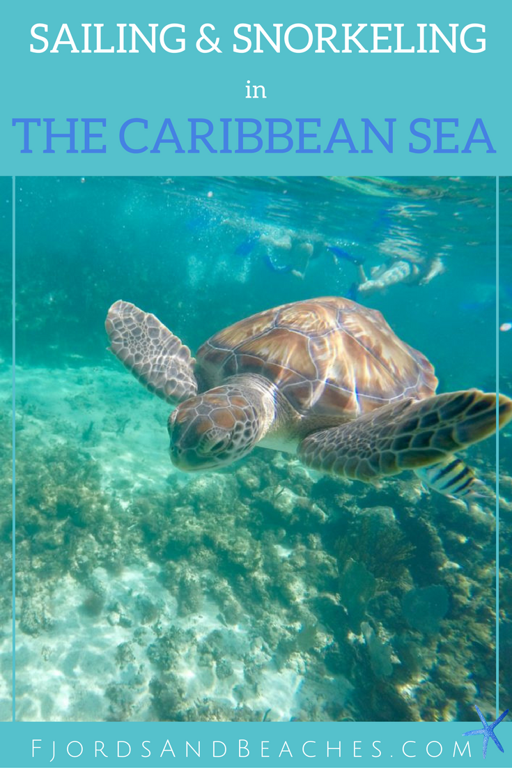 sailing and snorkeling in the caribbean sea