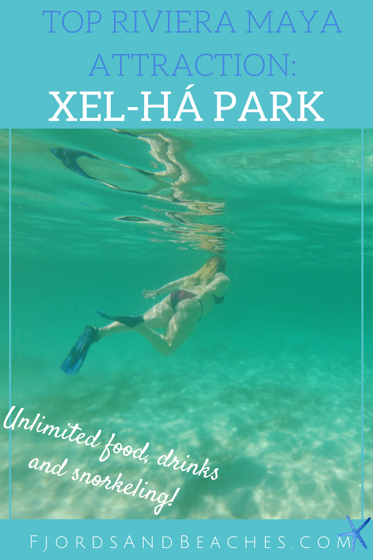 Visiting Xel-Há park is a must when you are in the Riviera Maya! This is one of the top attractions in Riviera Maya, Mexico. If you are wondering what to do in the Riviera Maya, look no further!