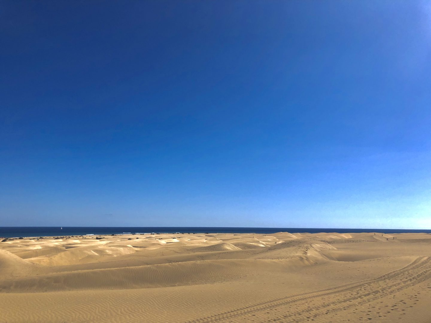Things to do in playa del ingles - the Maspalomas dunes