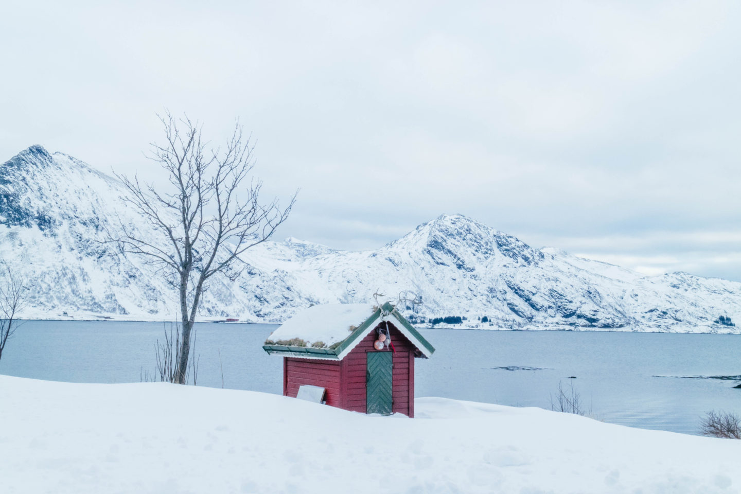 Life in Norway, red hut in Lofoten Norway